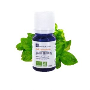 Basilic Tropical Bio 10 ml