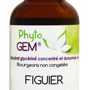 Phyto Gem Figuier 40 ml