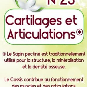 Phyto Gem Cartilages & Articulations 40 ml